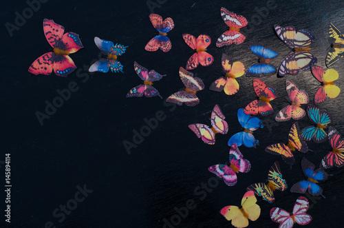 Fototapety, obrazy: Butterfly decoration on the black wooden background, still life butterfly