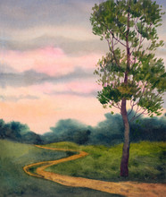 Lone Poplar Near Trails