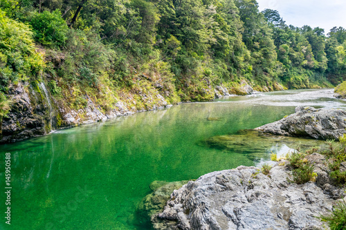 Beautiful green and clear Pelorus river, New Zealand Canvas Print