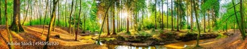 Papiers peints Forets Wald Panorama mit Bach und Sonne