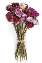 Bouquet Of Dried Roses On A White