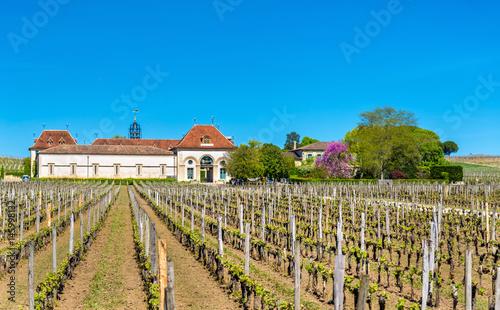 Photo Vineyards near Saint Emilion, France