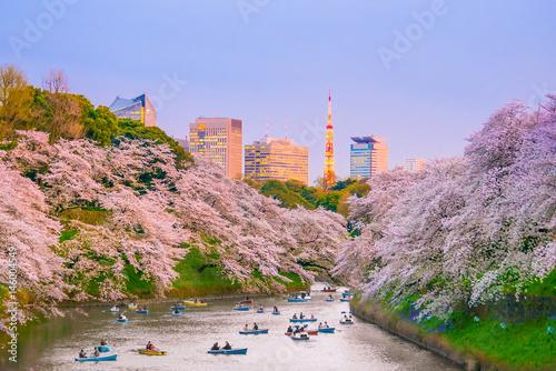 Poster Tokyo Chidorigafuchi park with full bloom sakura