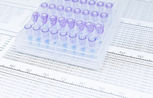 DNA Sequencing For Looking Mutations