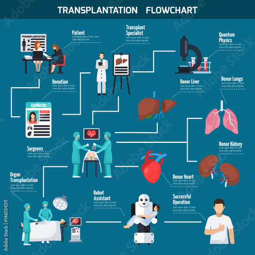 Transplantation Flowchart Layout Buy This Stock Vector And Explore