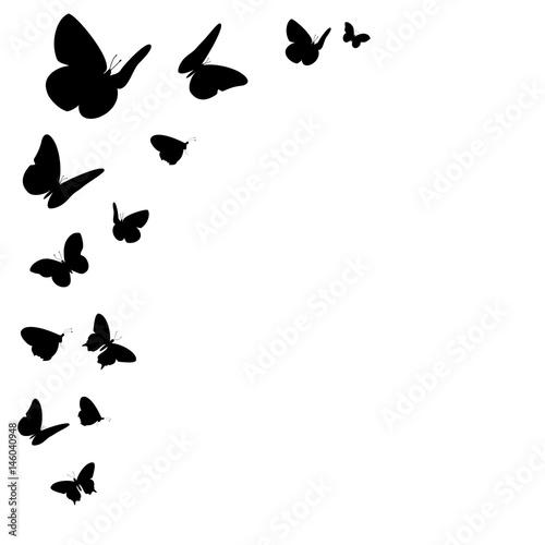 Fotografía  Bordüre mit schwarzen Schmetterling Silhouetten