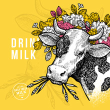 Farm Cow Design Template. Cow With Flowers Illustration. Vector Illustration