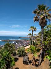 Playa Jardin, Puerto De La Cruz, Teneriffa, Spanien