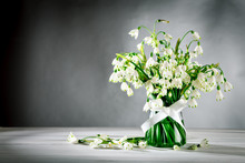 White Flowers Loddon Lily Stand In A Glass Vase On White Wooden Boards. On A Gray Background.