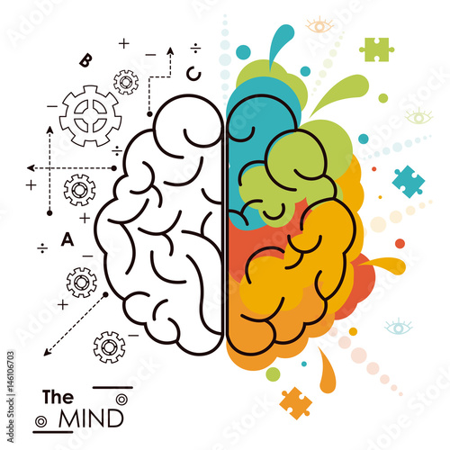 the mind brain human functions left right design vector illustration Wall mural