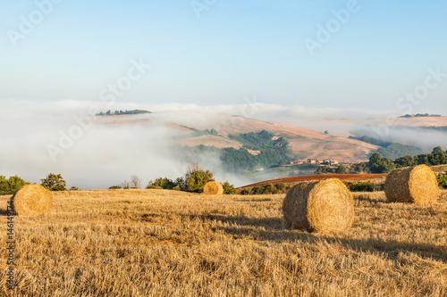 Fotografie, Obraz  Tuscany landscape