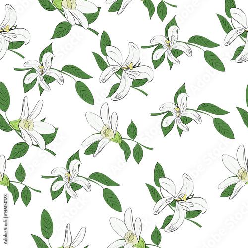 bezszwowe-wektor-wzor-recznie-rysowane-biale-kwiaty-i-liscie-tropikalny-tlo