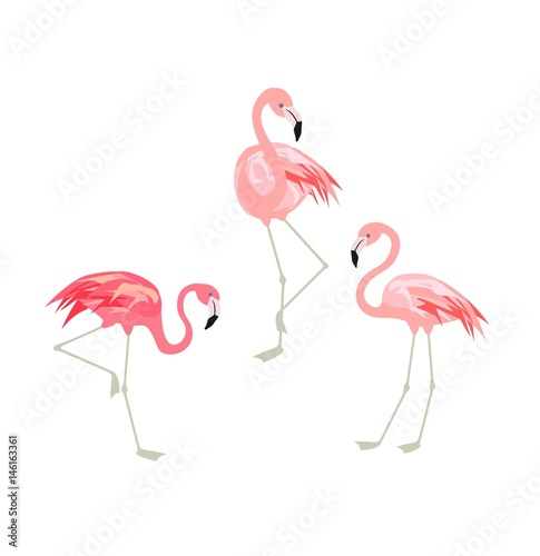 Keuken foto achterwand Flamingo Vector illustration with funny pink flamingo. Paper flat design with exotic birds