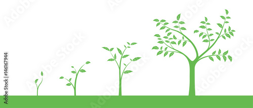 Vászonkép Vector illustration of a set of green icons - plant or tree growth phase, isolat