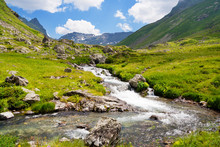 Mountain Stream In The Valley