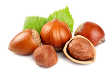 Hazelnuts With Green Leaf Isolated On White Background