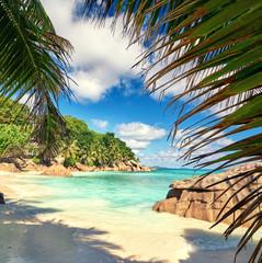 Panel Szklany 3D Palmen am Strand, Paradies Seychellen