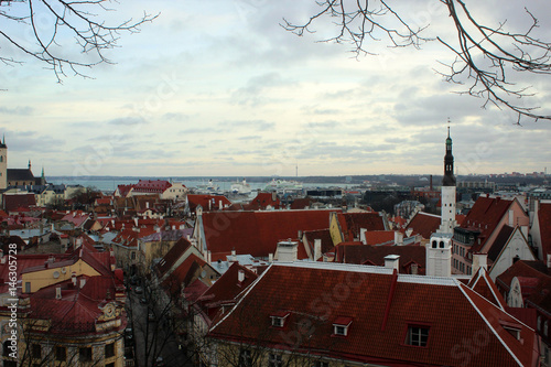 Old town of Tallinn panorama, Estonia