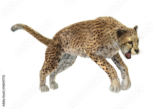Deurstickers Luipaard 3D Rendering Cheetah on White