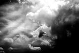 Moc światła słonecznego i burz Chmury w czerni i bieli. - 146359796