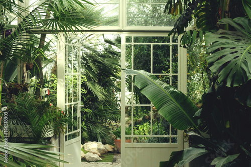 Photo greenhouse