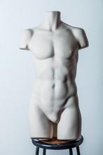 Naked 3d Mannequin Torso Body Male