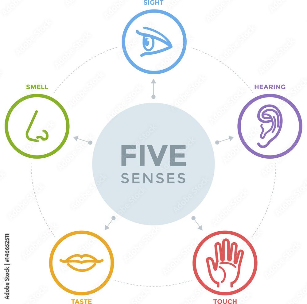 Fotografija Five senses with complex line icons in a mind map design