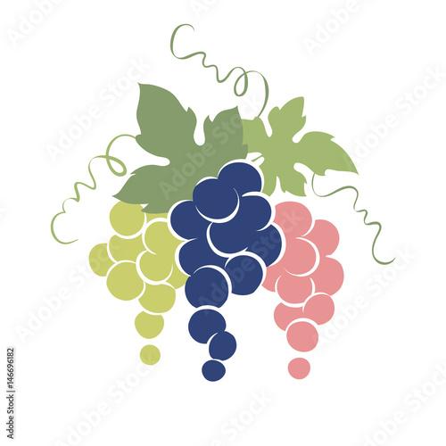 Emblem -- grapes / Vector illustration, simple image of grapes of three colors Fototapet