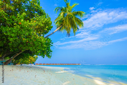 Spoed Foto op Canvas Caraïben Beautiful tropical Maldives island luxury resort with palm tree, sandy beach, turquoise sea and blue sky background