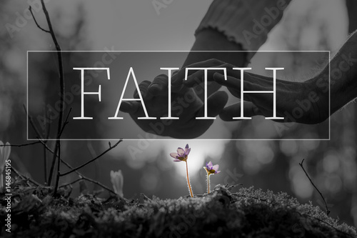 Photo Faith text over hands nurturing a flower