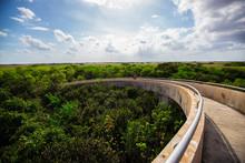 USA. FLORIDA. MIAMI. APRIL,2017: Everglades National Park, Shark Valley, Observation Tower.