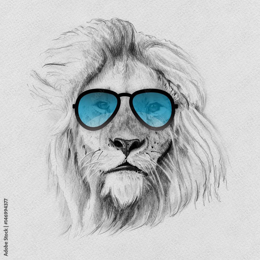 Fototapeta Portrait of lion drawn by hand in pencil in sunglasses