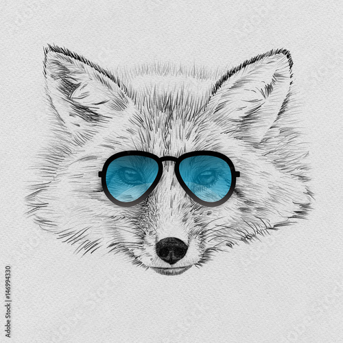 Portrait of fox drawn by hand in pencil in sunglasses - 146994330