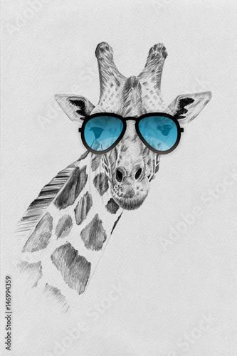 portret-zyrafa-w-okularach-przeciwslonecznych-niebieskie-szkla-szkic