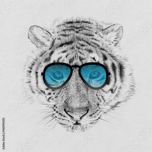 Poster Croquis dessinés à la main des animaux Portrait of tiger drawn by hand in pencil in sunglasses