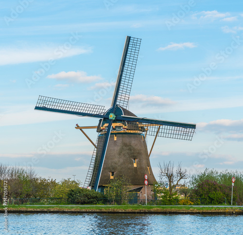 Canvas Prints Swan Dutch Windmill
