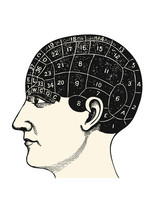 Vintage Medicine Vector Design Element: Regions Of The Human Brain, Retro Phrenology Illustration