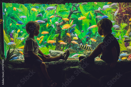 Two boys look at the fish in the aquarium Canvas Print