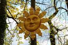 Eine Sonne An Einem Baum