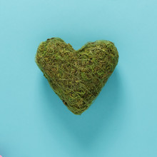 Big Green Moss Heart On Blue