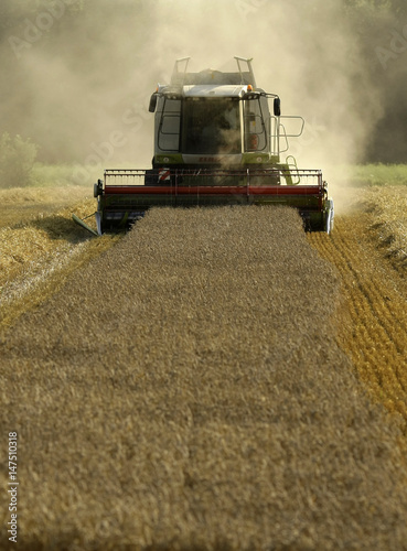 A farmer uses a combine harvester to cut wheat at a field