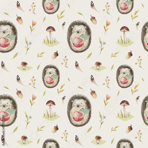 Cute Baby Hedgehog Animal Seamless Pattern Nursery Isolated
