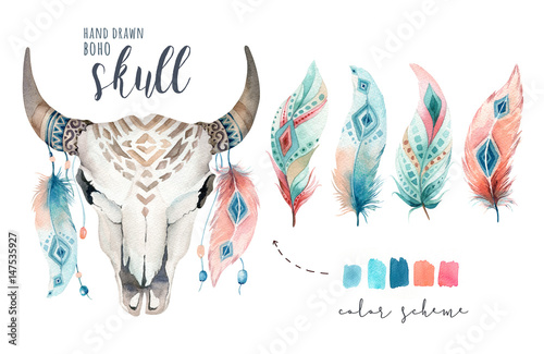 Photo  Watercolor bohemian cow skull and feather