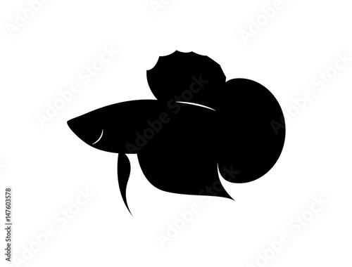 Photo graphic silhouette betta fish, vector