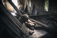 L' Ours Abandonné