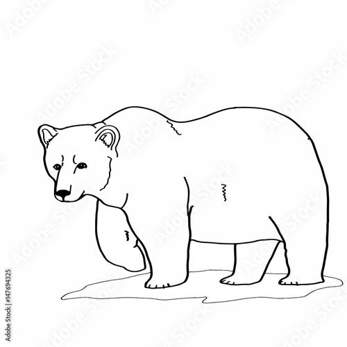 Foto op Aluminium Doe het zelf bear painting