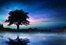 Starry Night With Lonely Tree