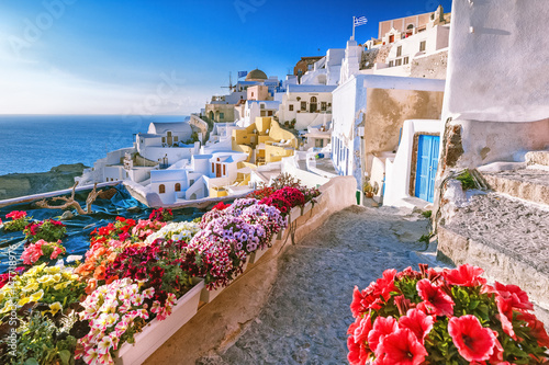 Scenic view of traditional cycladic houses on small street with flowers in foreground, Oia village, Santorini, Greece Wallpaper Mural