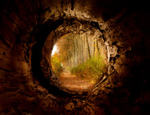 Secret Tunnel To The Magicfore...