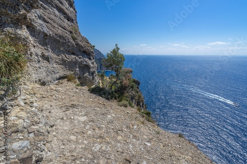 Spoed Foto op Canvas Liguria Scenic hiking trail of Tigullio promontory overlooking the Mediterranean Sea, Liguria, Italy